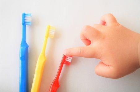 歯ブラシの歴史と構造