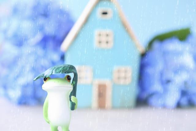 梅雨と歯痛
